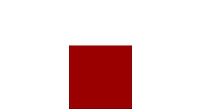 logo white small